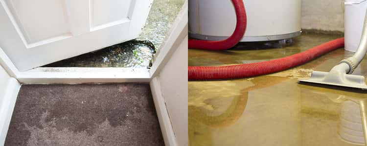 Best Flood Damage Restoration Dandenong