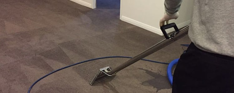 Expert End of Lease Carpet Cleaning Dandenong